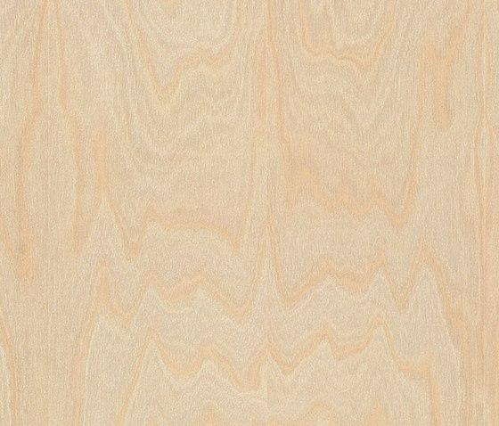 37568 Chene 3-frises de Kaindl | Panneaux
