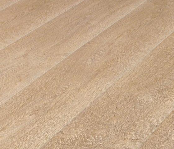 37638 Erable LH 1-plank de Kaindl   Sols stratifiés