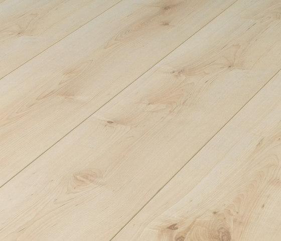 37638 Arce LH 1-plank de Kaindl | Suelos laminados