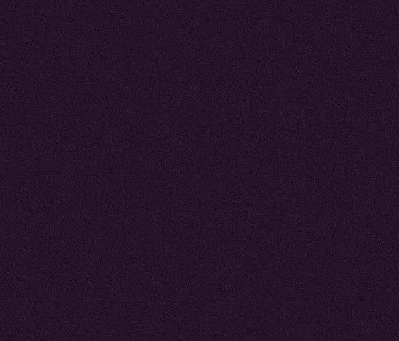 39704 Noce LH 1-plank di Kaindl | Panelli