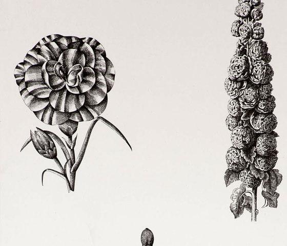 Guayana negro de Gastón y Daniela | Tissus pour rideaux