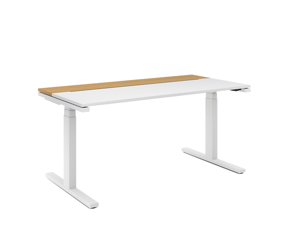 D1 Sitting/standing table by Denz | Individual desks