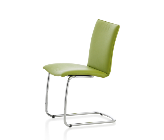 Freyr Chair by Leolux | Restaurant chairs