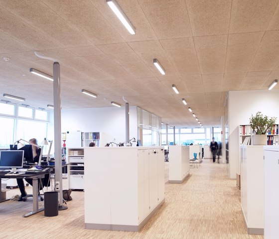 Applications | City hall Hillerõd by Troldtekt | Ceiling systems