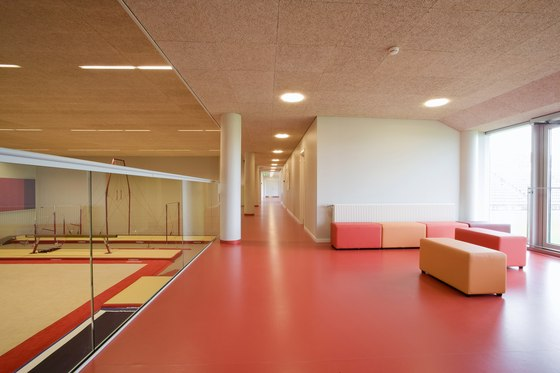 Applications | Gymnasium Torshavn by Troldtekt | Ceiling systems