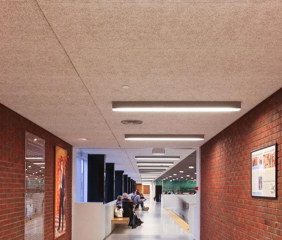 Placas acústicas Troldtekt de Troldtekt | Paneles de techo