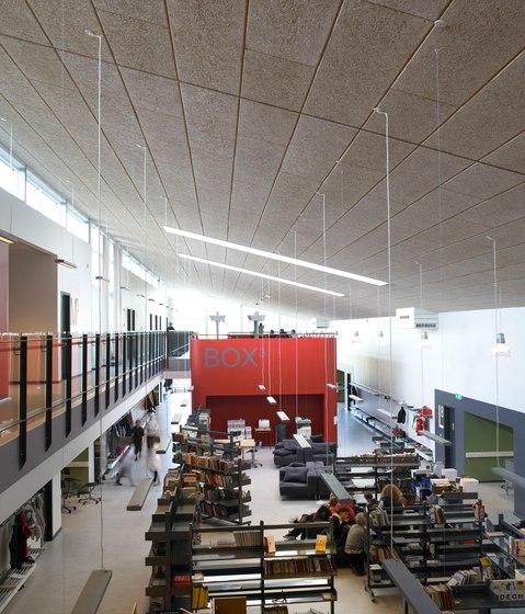 Applications | School Ellekilde by Troldtekt | Ceiling systems