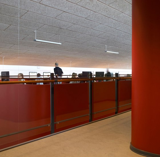 Applications   School Ellekilde by Troldtekt   Ceiling systems