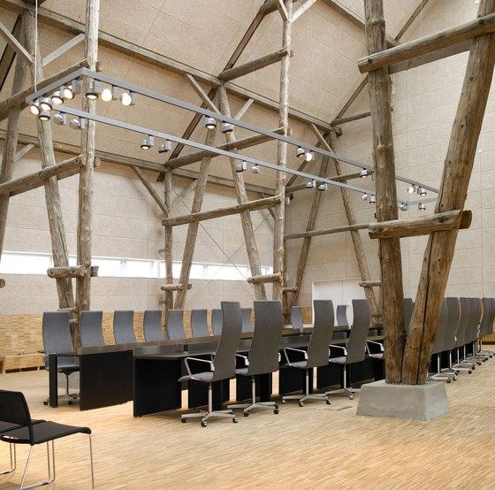 Applications | City hall Hillerõd de Troldtekt | Panneaux muraux