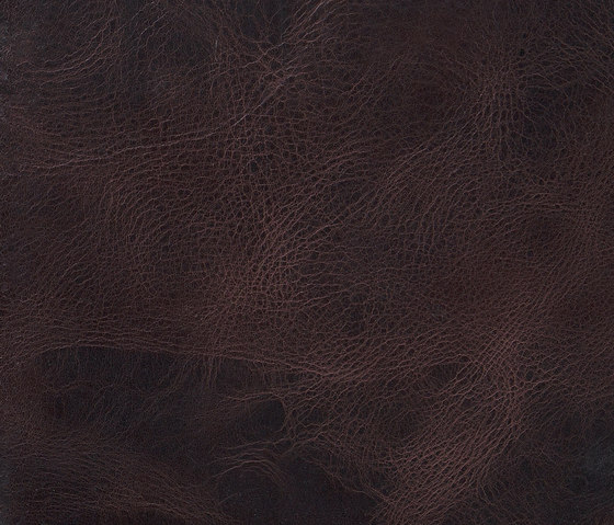 Pampas Moro by Alphenberg Leather | Leather tiles