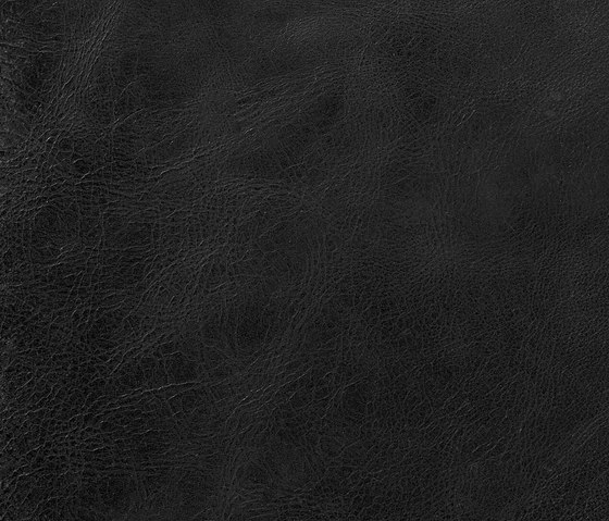 Pampas Pitch Black de Alphenberg Leather | Natural leather wall tiles
