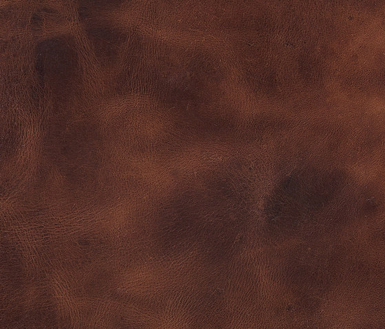 Pampas Tan by Alphenberg Leather | Natural leather wall tiles