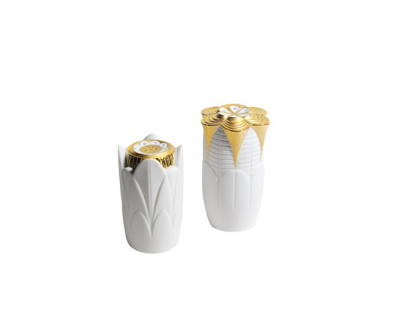 Naturofantastic - Salt & pepper shakers (white) di Lladró | Sale & Pepe