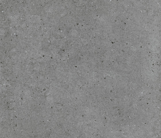 Argent Stone In by Caesar | Ceramic panels