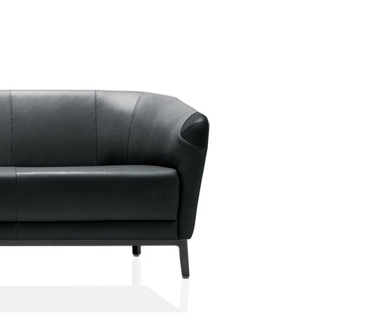 Rolf Benz 232 by Rolf Benz | Lounge sofas
