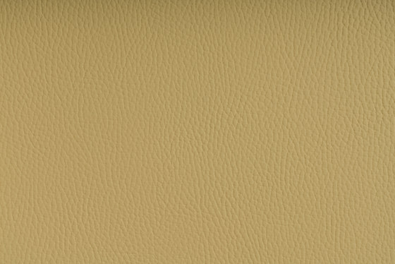 Beluga Light Yellow by SPRADLING | Outdoor upholstery fabrics