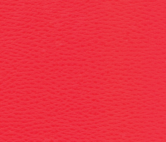 Beluga Cherry by SPRADLING | Outdoor upholstery fabrics