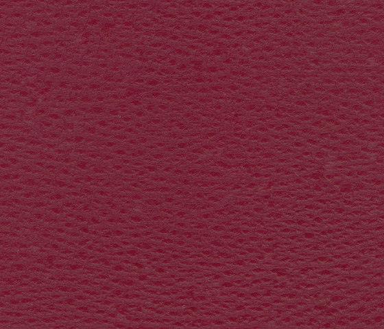 Beluga Burgundy by SPRADLING | Outdoor upholstery fabrics