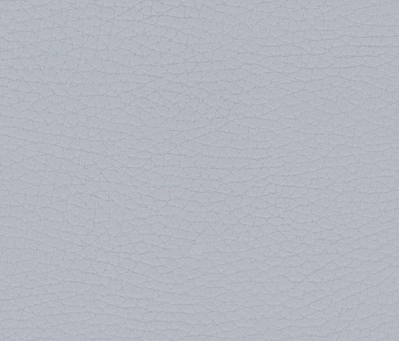 Beluga Pearl Grey by SPRADLING | Outdoor upholstery fabrics