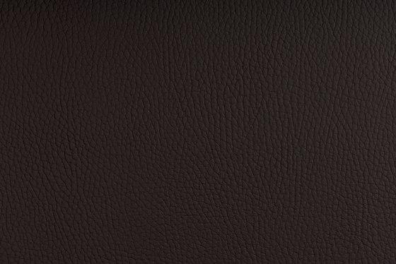 BELUGA MOCCA von SPRADLING | Möbelbezugstoffe