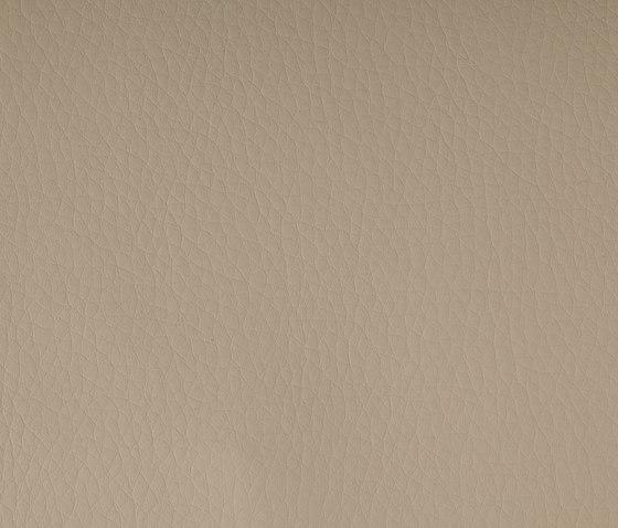 DOLCE Polyurethane Ecru di SPRADLING | Tessuti
