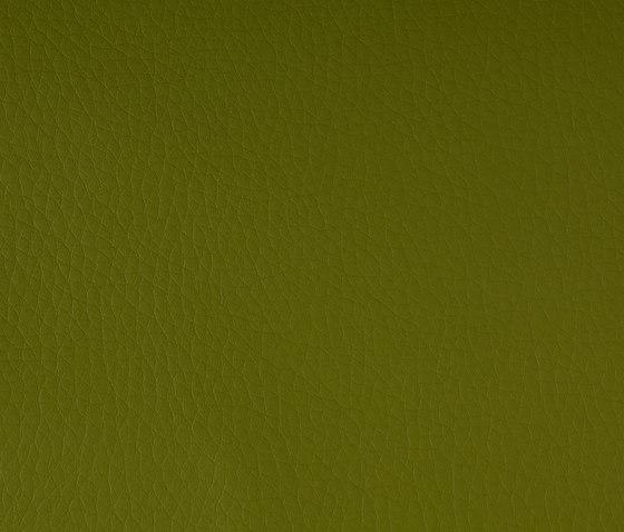 DOLCE Polyurethane Grass di SPRADLING | Tessuti