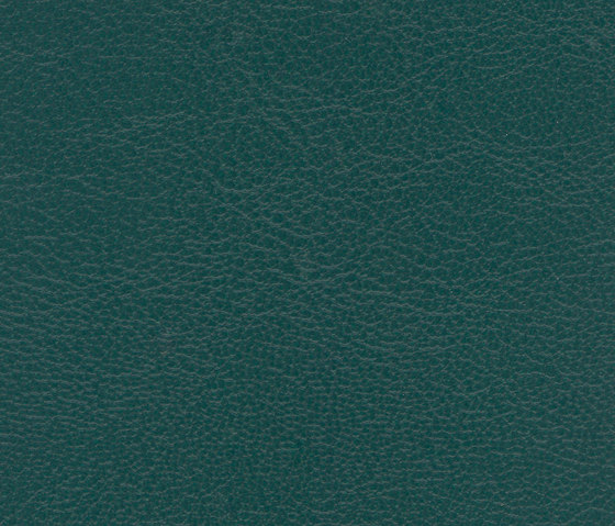 Marlin Forest by SPRADLING | Outdoor upholstery fabrics