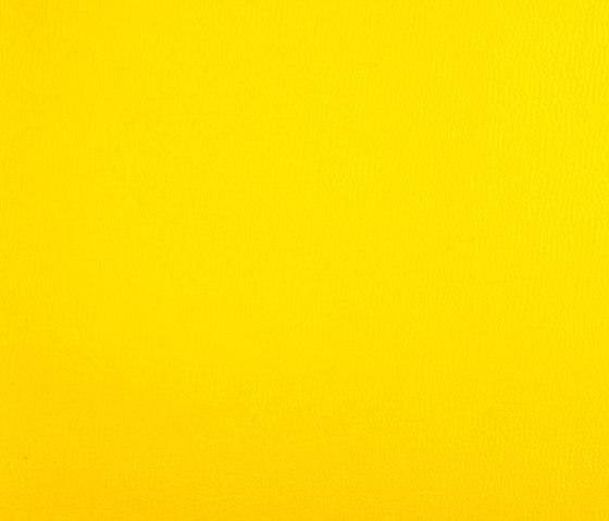 Oxygen Sun di SPRADLING | Tessuti