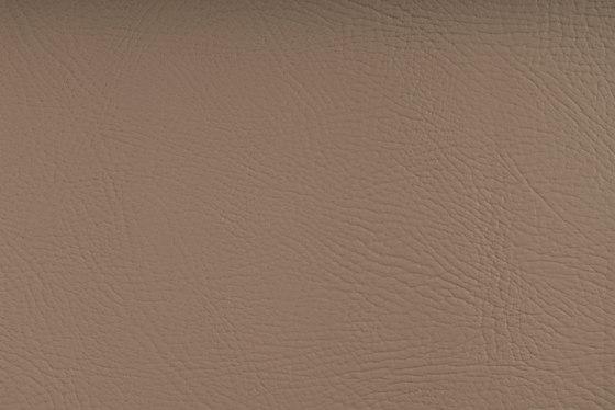 Pegasus Sand Dollar di SPRADLING | Tappezzeria per esterni