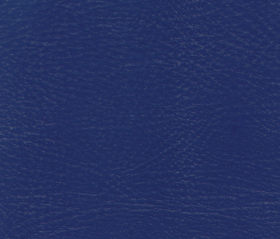 Pegasus Midnight by SPRADLING | Outdoor upholstery fabrics