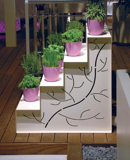 Étagère von Metalco Home   Pflanzen-Displays