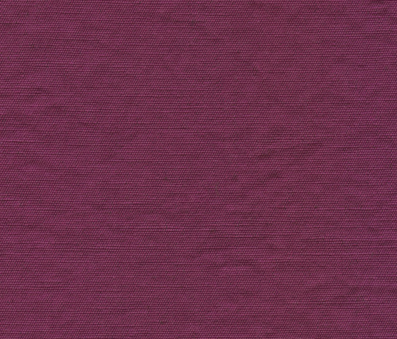 Archipel LI 736 59 by Elitis | Curtain fabrics