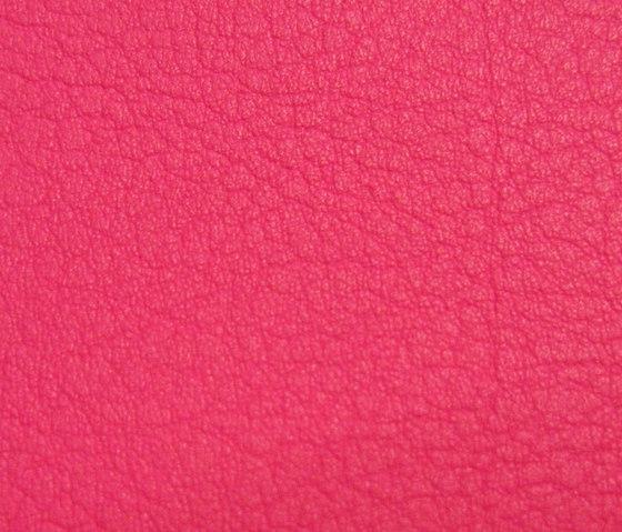 Valencia Pink di SPRADLING | Tessuti