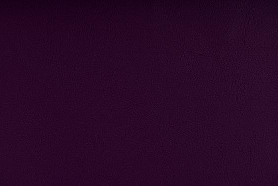 VALENCIA™ AMETHYST de SPRADLING | Tejidos tapicerías