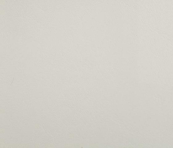 Zander Off White by SPRADLING | Outdoor upholstery fabrics