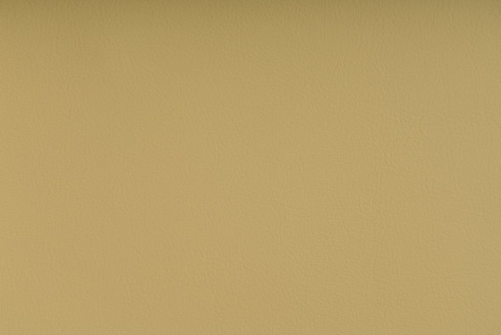 MARLIN LT. YELLOW by SPRADLING | Upholstery fabrics