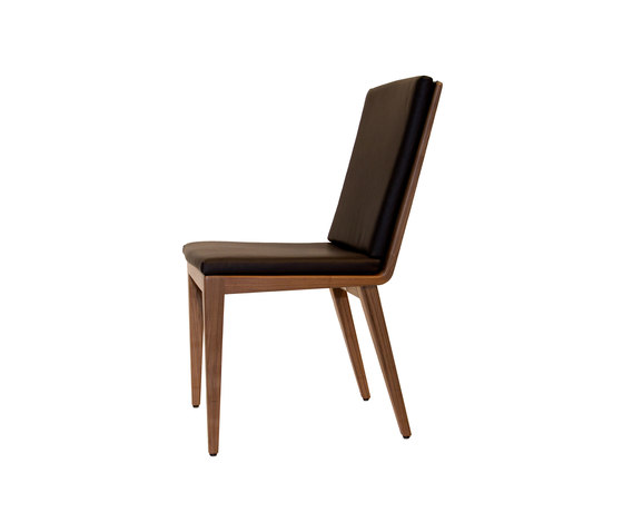 Divo Dining chair by Accente | Restaurant chairs