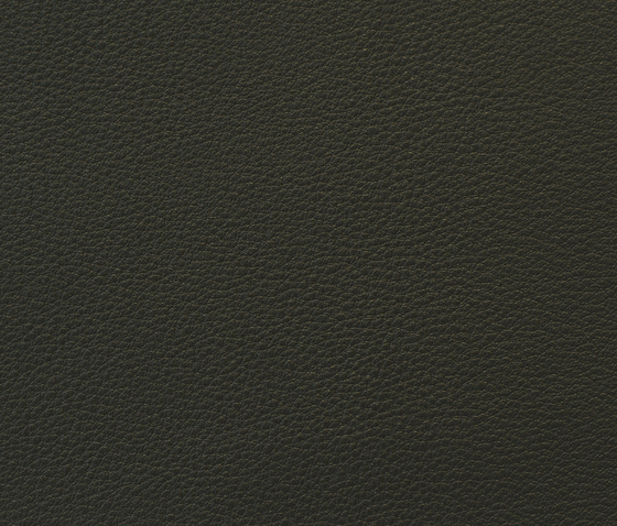 Highland Bruin by Montis | Leather