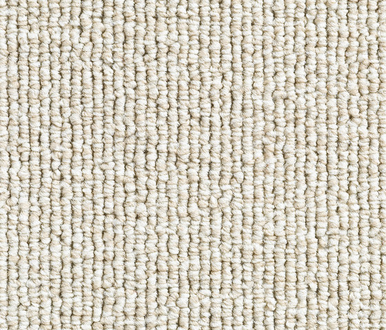 Concept 501 - 102 by Carpet Concept | Carpet rolls / Wall-to-wall carpets
