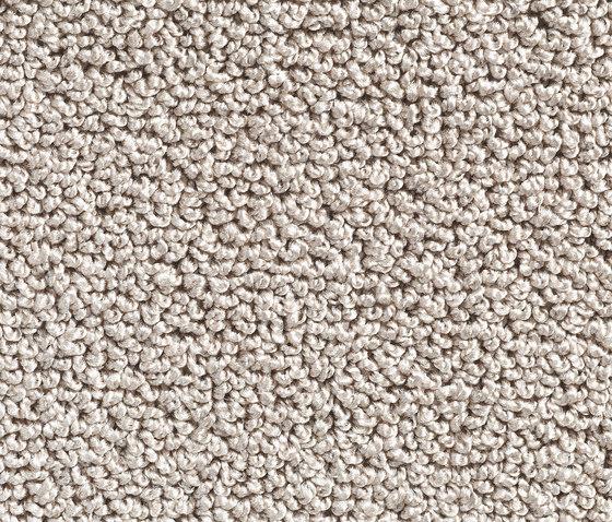 Concept 502 - 108 de Carpet Concept | Moquettes