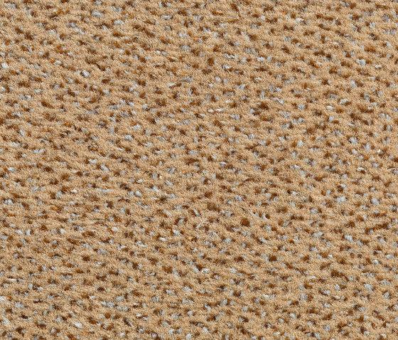 Concept 503 - 119 de Carpet Concept | Moquetas
