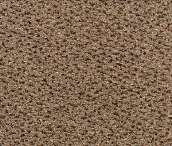 Concept 503 - 136 by Carpet Concept | Wall-to-wall carpets
