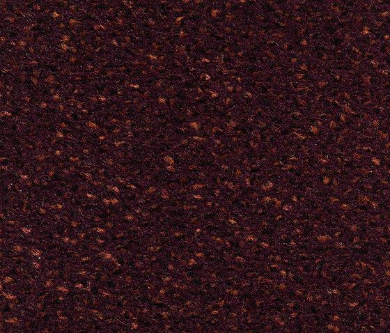 Concept 503 - 251 de Carpet Concept | Moquetas