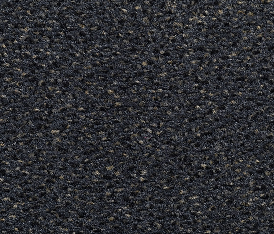 Concept 503 - 322 by Carpet Concept | Carpet rolls / Wall-to-wall carpets