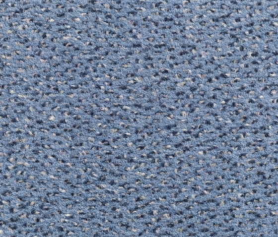Concept 503 - 405 by Carpet Concept | Carpet rolls / Wall-to-wall carpets