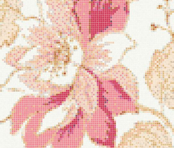 Marella Rose A von Bisazza | Glas Mosaike