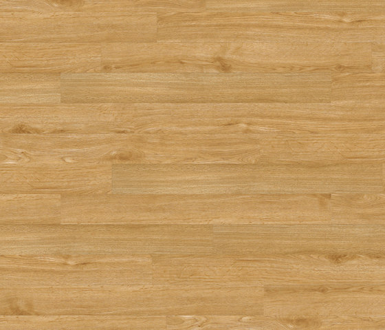 Floors@Home | 30 PW 1231 de Project Floors | Planchas