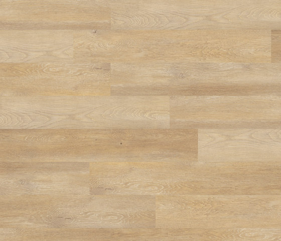 Floors@Home | 30 PW 1250 de Project Floors | Planchas