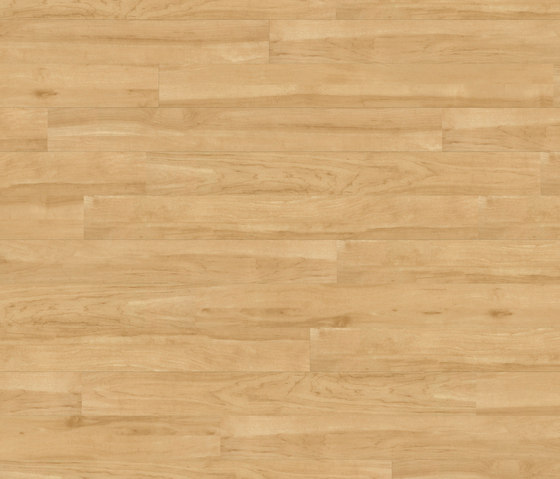 Floors@Home | 30 PW 1903 de Project Floors | Planchas