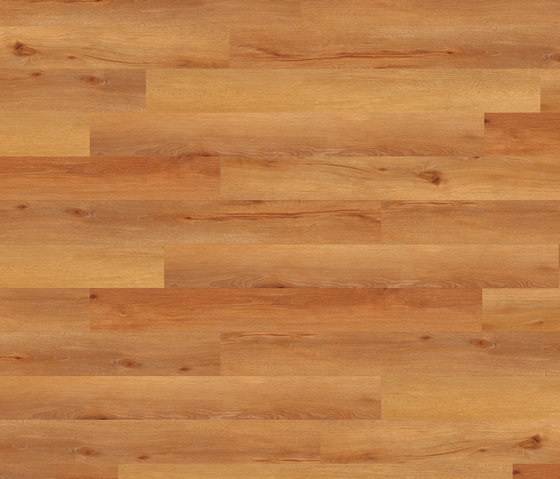 Light Collection Planke PW 3014 DP von Project Floors | Kunststoff Platten